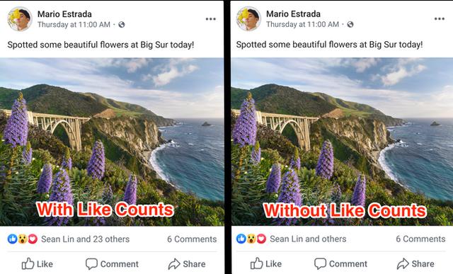 Khuyến khích mọi người sống thật và không đố kị, Facebook bắt đầu ẩn số lượng like trên bài viết - Ảnh 1.