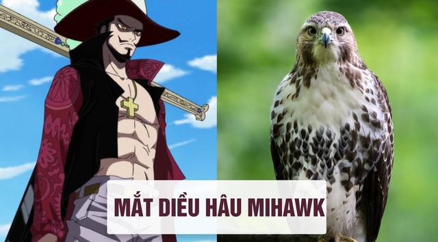 One Piece: Tên của các nhân vật và loài vật tương ứng với họ ở đời thật - Ảnh 2.