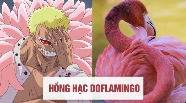 One Piece: Tên của các nhân vật và loài vật tương ứng với họ ở đời thật - Ảnh 5.