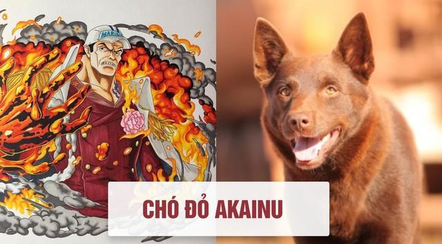 One Piece: Tên của các nhân vật và loài vật tương ứng với họ ở đời thật - Ảnh 6.