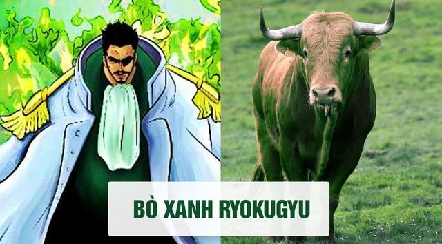 One Piece: Tên của các nhân vật và loài vật tương ứng với họ ở đời thật - Ảnh 10.
