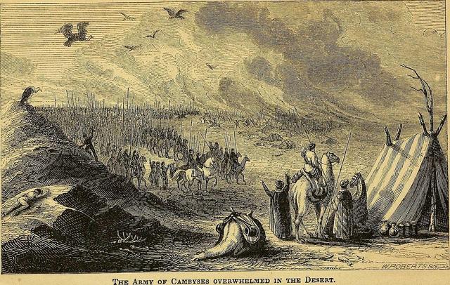 Tranh vẽ quân đội của vua Cambyses