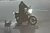 Góc ngáo ngơ: Người đàn ông dừng xe cãi nhau với chó suốt nửa tiếng, lúc đuối lý bèn bày trò phá hoại để dọa nó