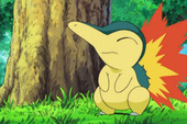 Những lý do bạn nên chọn hệ lửa để bắt đầu 1 game Pokemon (P.2)