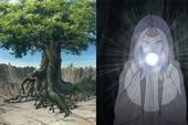 Naruto: Thập Vĩ là hạt giống của Thánh thụ nên trước khi Kaguya tới Trái Đất, cây thần đã được trồng từ lâu