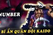 One Piece: Không phải Bộ 3 Thảm họa hay Flying Six, đây mới là lực lượng mạnh nhất mà Kaido có được?