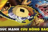 One Piecee: Sức mạnh nổi bật của các Cửu Hồng Bao- những kẻ liều lĩnh dám đánh hội đồng Tứ Hoàng Kaido