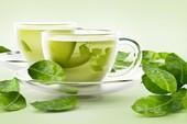 Góc tối cổ: Định nghĩa đầy đủ về 'trà xanh' để netizen yên tâm hóng drama nhà 'Sếp'
