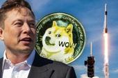 Tỷ phú Elon Musk đưa Dogecoin lên Mặt trăng theo đúng nghĩa đen