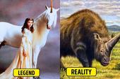 Sự thật về 8 con quái vật trong huyền thoại dưới góc nhìn khoa học (P.2)