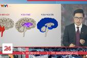 """Loạt BTV nổi tiếng VTV lên tiếng bênh Sơn Lâm sau sự cố """"não người"""" - """"não thú"""", nhưng lại như đổ dầu vào lửa?"""