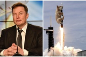 """Elon Musk lại """"làm phép"""" trên trang cá nhân, một đồng coin tăng giá tới hơn 1.000% chỉ trong ít giờ"""