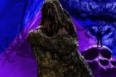 Mothra có thể trở thành vị cứu tinh cho quê hương của Kong trong vũ trụ điện ảnh MonsterVerse?