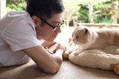 Sắp có phim điện ảnh về những chú mèo Nhật Bản siêu dễ thương