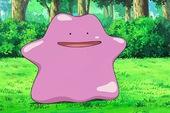 Pokemon GO gần hơn với update thế hệ 2, khả năng cao bắt được Pokemon huyền thoại Ditto