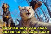 """Chết cười thanh niên """"nhẫn nhục"""", check-in cả với... mèo chỉ vì một chiếc Giftcode"""