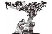 """Hơn 100 nhà khoa học Trung Quốc lên án nghiên cứu """"điên rồ"""" tạo ra 2 bé gái chỉnh sửa gen, họ cảnh báo chiếc hộp Pandora đã được mở"""