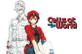 """Bộ ảnh Cosplay chàng """"Bạch Cầu"""" trong anime đình đám Cells at Work khiến các fan nữ muốn """"rụng trứng"""""""