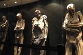 6 viện bảo tàng trưng bày những hiện vật kinh dị ngoài sức tưởng tượng