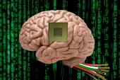Cấy chip AI vào não có thể khiến bạn mất trí