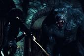 """10 bộ phim kinh dị hay nhất về """"người sói"""" cho những ai thích loài sinh vật huyền bí này"""