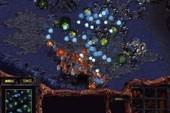 Có hay không StarCraft: Brood War tại WCG 2011?