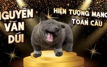 Hot như nhiều idol thật sự, chú chó Nguyễn Văn Dúi trở thành ngôi sao mạng, được yêu thích trên toàn cầu