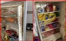 Mở tủ lạnh sau 4 tháng nghỉ tránh dịch, nữ sinh rùng mình vì
