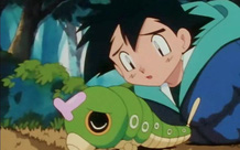 Phát hiện 7 con sâu trong những gói rau mới mua, anh thanh niên quyết định nuôi dưỡng chúng khôn lớn thành bướm rồi thả đi