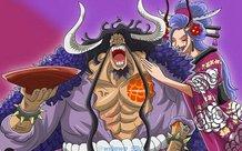 One Piece: Chính thức bác bỏ thuyết âm mưu Yamato là một