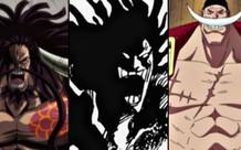 One Piece: 5 nhân vật được Tứ Hoàng thừa nhận đã từng