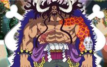 Kaido đã thành công khi xây dựng một băng hải tặc Bách Thú có tổ chức tốt nhất trong One Piece