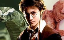 Tiết lộ lý do cực đen tối khiến Harry Potter bị cả nhà Dursley hành hạ: Bằng chứng được sắp đặt từ tập 1 mà không ai phát hiện?