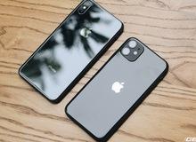iPhone 11 và iPhone Xs Max: Chọn mua iPhone nào chơi Tết?