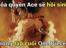 Ý kiến trái chiều, người ủng hộ kẻ phản đối Ace hồi sinh trong tập cuối của One Piece