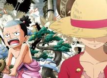 One Piece: Momonosuke sẽ tham gia băng Mũ Rơm để kế thừa di sản của gia tộc Kozuki?