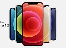 Apple chính thức trình làng siêu phẩm iPhone 12: Siêu nhanh, siêu bảo mật, đầy màu sắc cho anh em lựa chọn