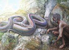 Vì sao 1/3 nhân loại lại sợ rắn và sự thật về những loài bò sát khổng lồ từng xơi tái cá voi và khủng long thời tiền sử