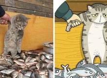 Khi những chú mèo meme được họa lại theo phong cách hoạt hình siêu cute, đốn tim từ ảnh đầu luôn