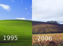 Sự thật bất ngờ phía sau 'ảnh nền huyền thoại của hệ điều hành Windows XP'