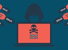 Hacker tuổi teen đứng sau vụ tấn công DDoS rúng động thế giới năm 2016 cúi đầu nhận tội