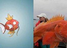 Nguyên mẫu đời thực của các Pokémon đình đám