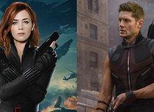 Những diễn viên từng được xem xét nhận vai Black Widow và Hawkeye trong vũ trụ điện ảnh Marvel