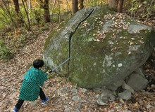Kimetsu no Yaiba: Đã phát hiện ra khu rừng nơi Tanjiro luyện tập ngoài đời thực, trên đá còn nguyên vết chém khổng lồ