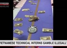 """Đài truyền hình Nhật cảnh báo người dân dạng cờ bạc mới tên là """"sock deer"""", hóa ra là trò... xóc đĩa"""