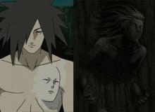 Naruto: Kéo dài tuổi thọ và 5 hiệu ứng tuyệt vời đã được tận dụng từ tế bào Hashirama