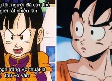 Dragon Ball: Vợ chồng Goku và Chichi trở thành bể muối để fan chế meme hài hước