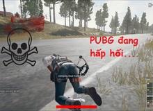 Call of Duty: Warzone vừa ra mắt, game thủ PUBG Việt đã náo loạn, thi nhau bán acc rẻ như cho