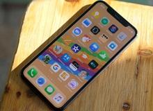 iOS 14 sẽ mang đến thay đổi mà người dùng iPhone đã chờ đợi suốt hơn 10 năm qua