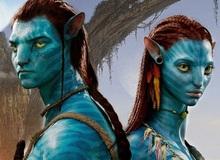 Siêu phẩm Avatar 2 hoãn lịch quay vô thời hạn trước ảnh hưởng của COVID-19